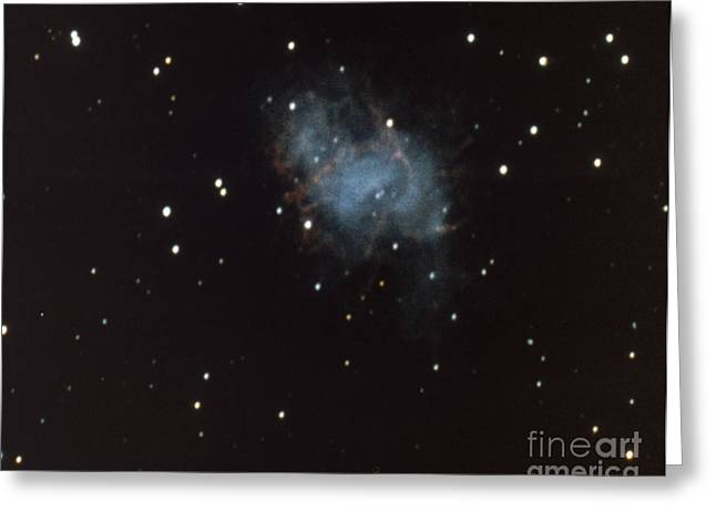 Crab Nebula In Taurus Greeting Card by Science Source