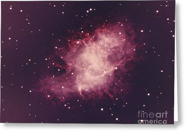 Crab Nebula Greeting Card by Science Source