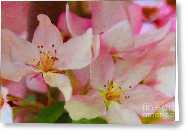 Crabapple Floral Paint Greeting Card by Donna Munro