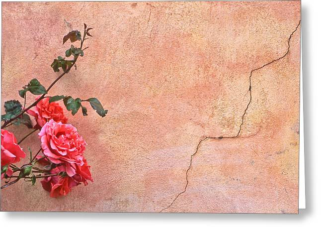 Cracked Wall And Rose Greeting Card