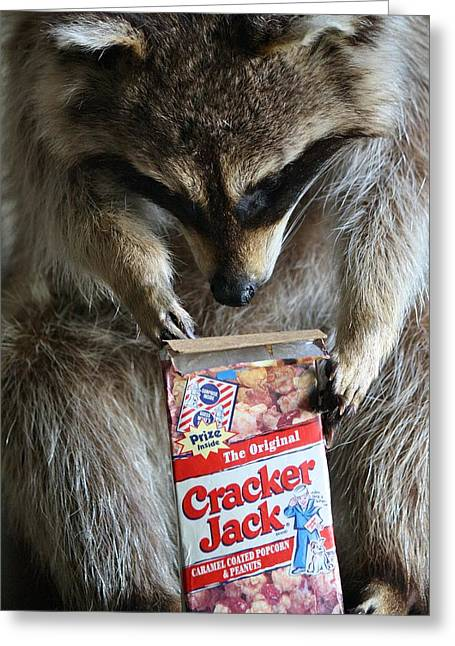 Cracker Jack Greeting Card by Paulette Thomas