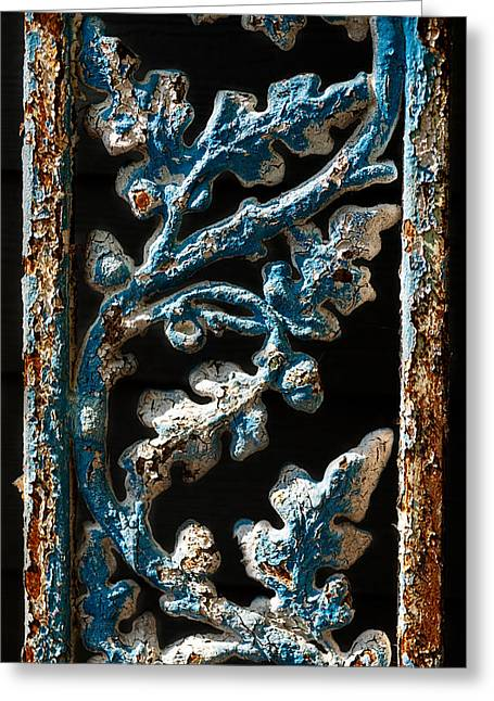 Crackled Coats Greeting Card by Christopher Holmes