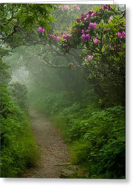 Craggy Path 2 Greeting Card