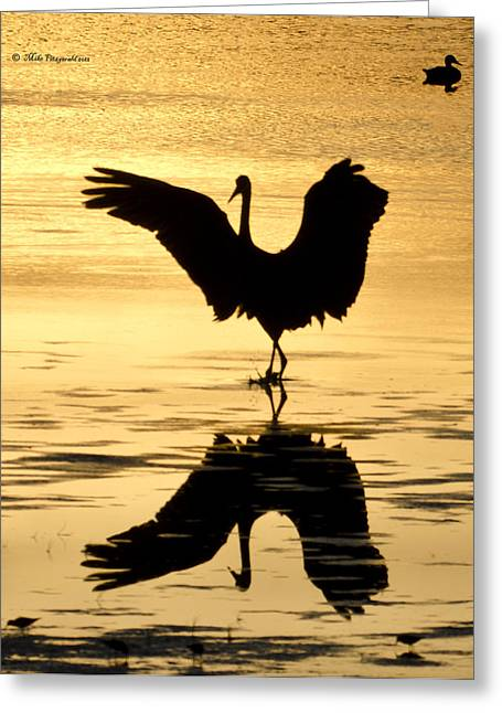 Crane Silhouette Greeting Card