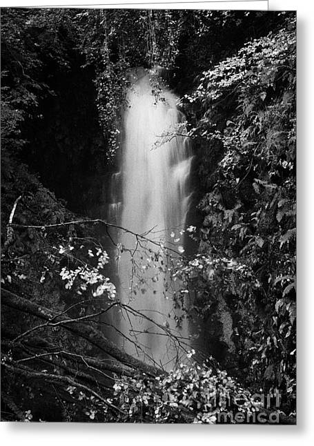 Cranny Falls Waterfall Carnlough County Antrim Northern Ireland Uk Greeting Card by Joe Fox