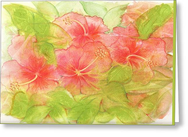 Creamsicle Hibiscus Greeting Card by Carla Parris