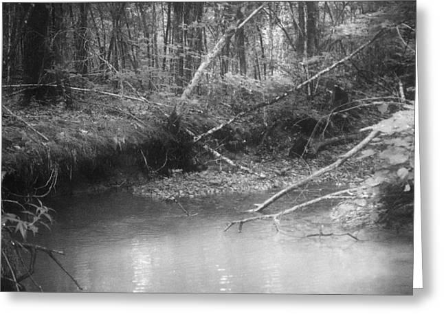 Creek Greeting Card by Floyd Smith