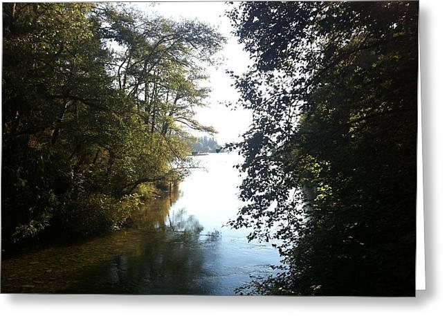 Crescent Lake Thru The Trees Greeting Card