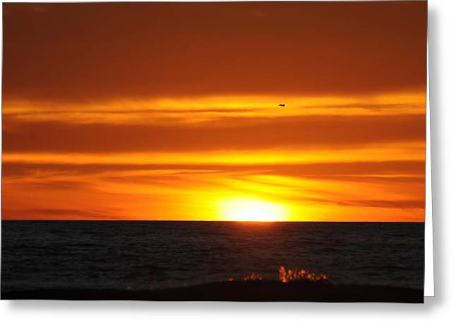 Crimson Sunset Greeting Card