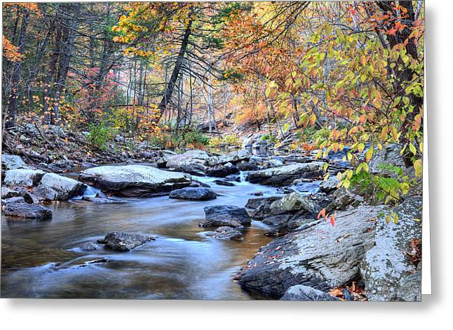 Crisp Autumn Air Greeting Card by JC Findley