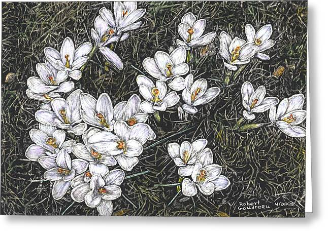 Crocus Flowers Greeting Card by Robert Goudreau