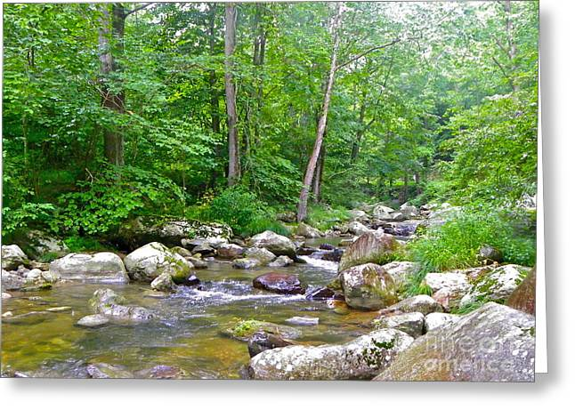 Greeting Card featuring the photograph Crooked Creek by Eve Spring