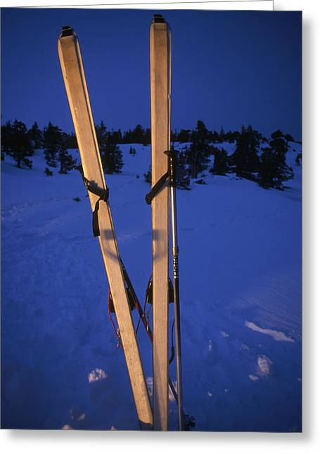 Cross-country Skis Standing Upright Greeting Card by Phil Schermeister