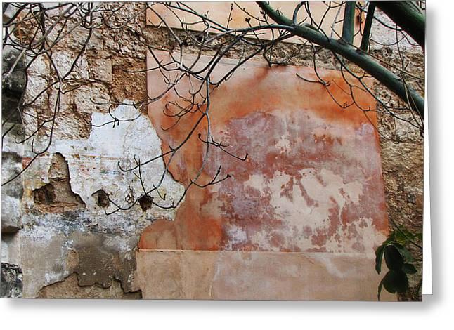 Crumbling Wall Greeting Card by Kimberley Bennett