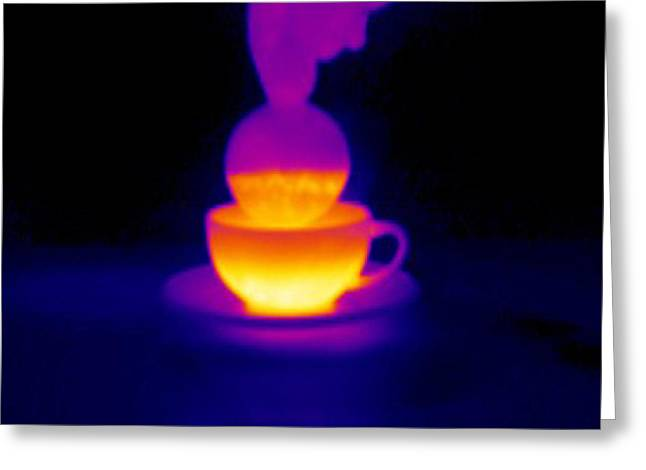 Cup Of Tea, Thermogram Greeting Card by Tony Mcconnell