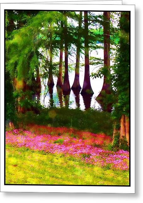 Cypress With Oxalis Greeting Card by Judi Bagwell