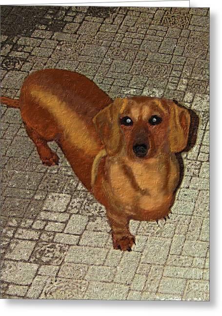 Dachshund - Cinnamon Greeting Card by L J Oakes
