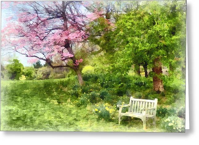 Daffodils By Bench Greeting Card by Susan Savad