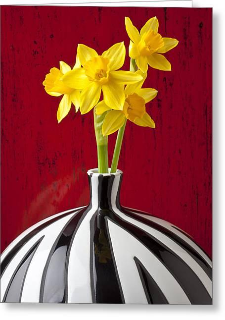 Daffodils Greeting Card by Garry Gay