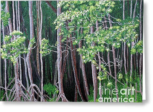 Daintree Forest At Twilight Greeting Card by Tatjana Popovska