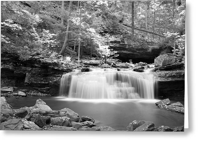Dainty Waterfall Greeting Card by David Troxel