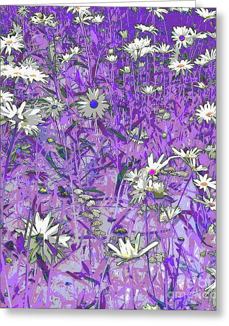 Daisies Greeting Card by Anne Havard
