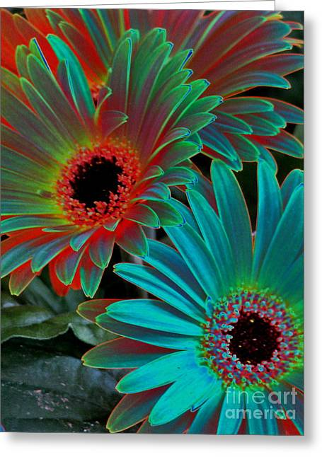 Daisies From Another Dimension Greeting Card by Rory Sagner