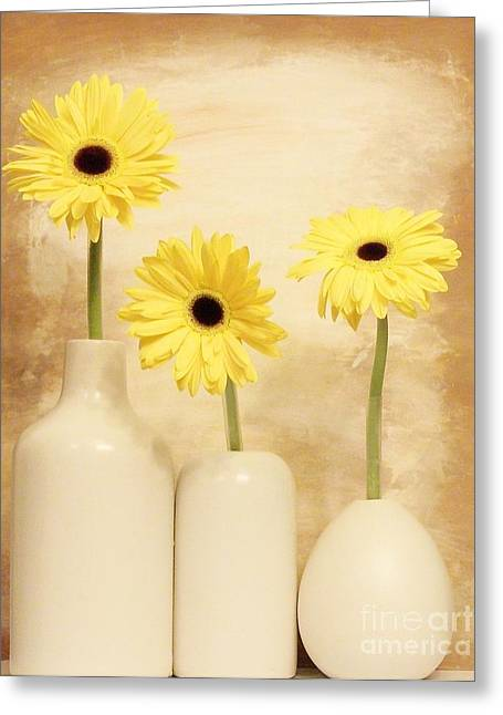 Daisies In A Row Greeting Card by Marsha Heiken