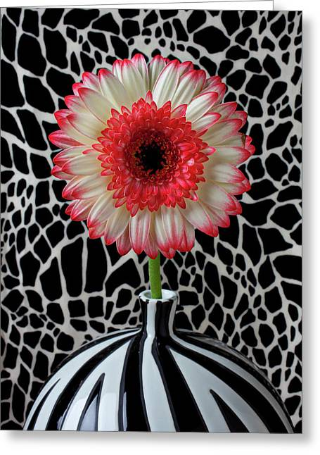 Daisy And Graphic Vase Greeting Card by Garry Gay