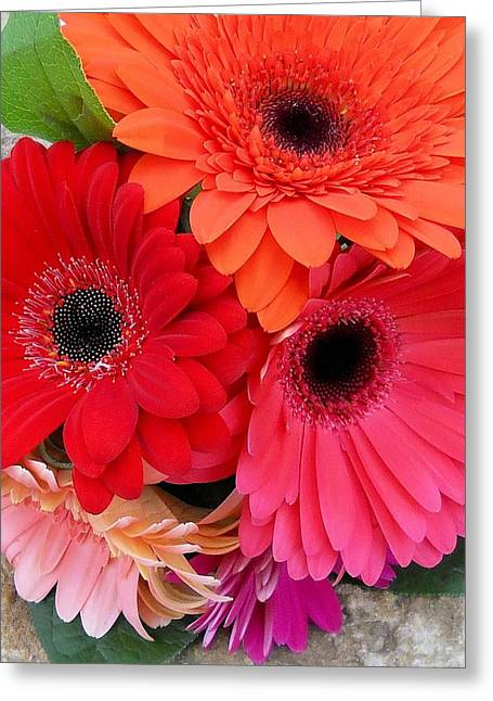 Daisy Bouquet Greeting Card by Lynnette Johns