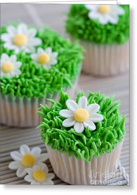 Daisy Cupcakes Greeting Card by Ruth Black