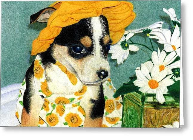 Daisy-mae Dawg Greeting Card