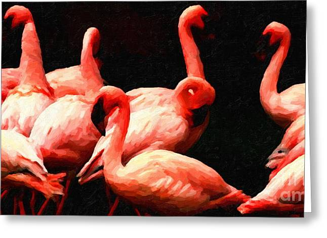 Dancing Flamingos Greeting Card by Wingsdomain Art and Photography