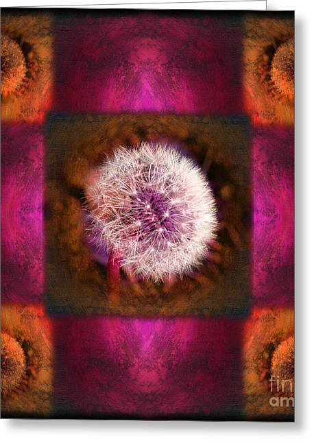 Dandelion In Flame Greeting Card by Laura Iverson