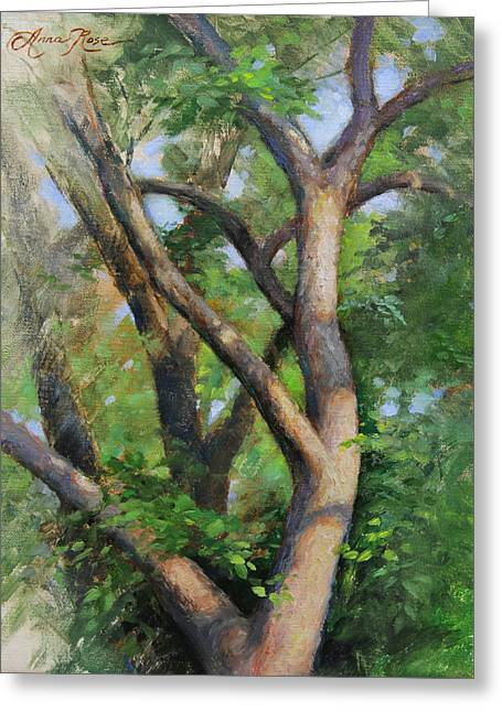 Dappled Woods Greeting Card by Anna Rose Bain