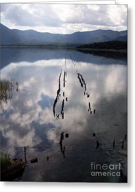 Greeting Card featuring the photograph Dark Reflections by Cheryl McClure