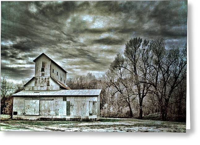 Dark Skies Greeting Card by Elizabeth Wilson