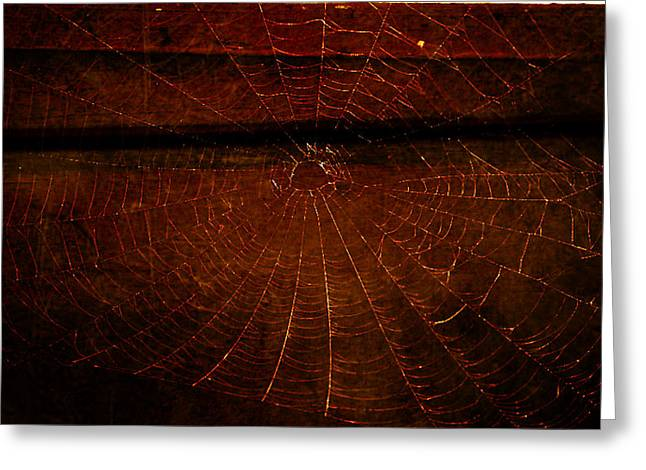 Greeting Card featuring the photograph Dark Web by Robin Dickinson