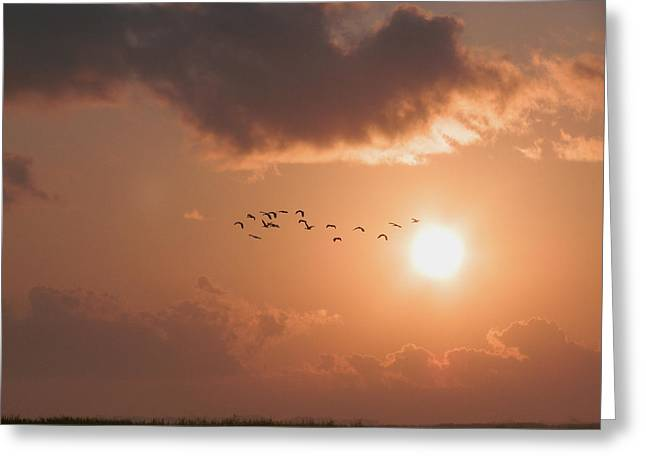 Dawn Flight Greeting Card