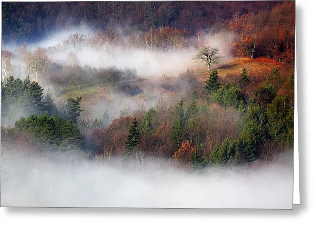 Dawn Mists Slovenia Greeting Card by Graham Hawcroft pixsellpix