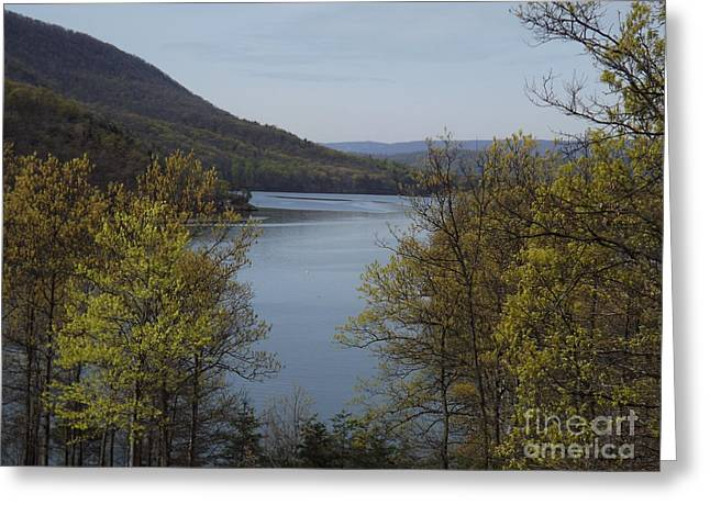 Day At The Lake Greeting Card by Chad Thompson