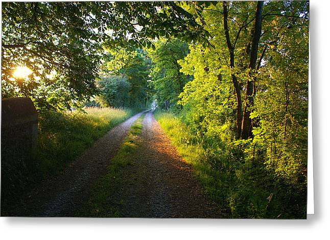 Daylight Breaks On A Burgundy Road Greeting Card