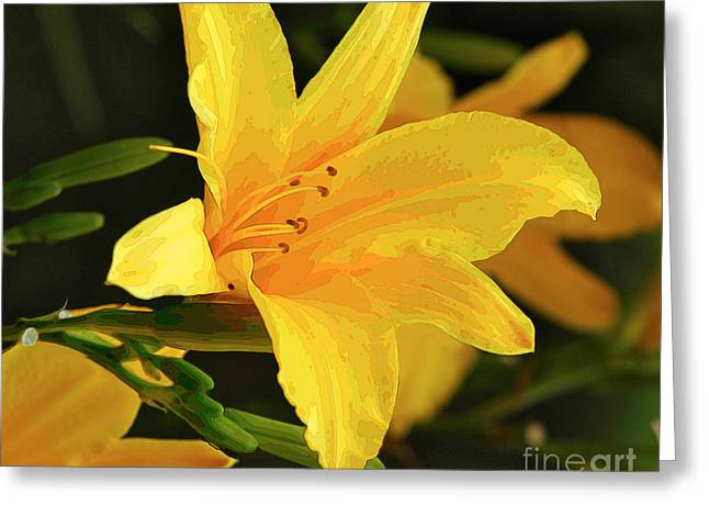 Daylilly 1 Greeting Card