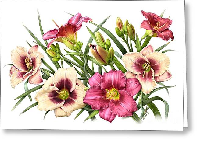 Daylily Bouquet - Rubies Greeting Card