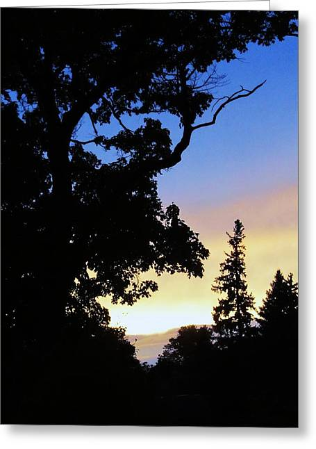 Day's End Greeting Card by Todd Sherlock