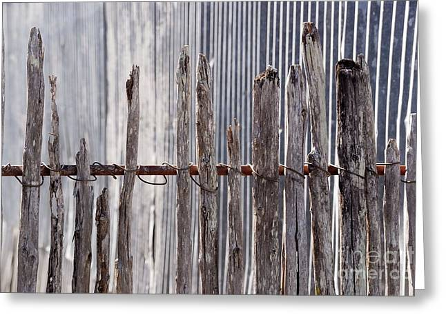 De-fence Greeting Card