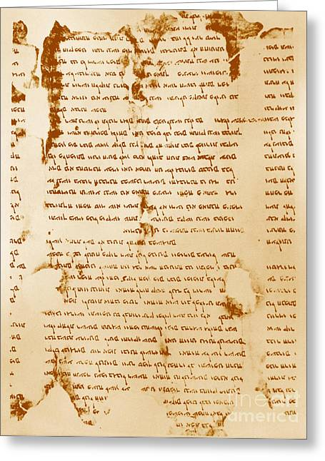 Dead Sea Scroll Greeting Card by Photo Researchers