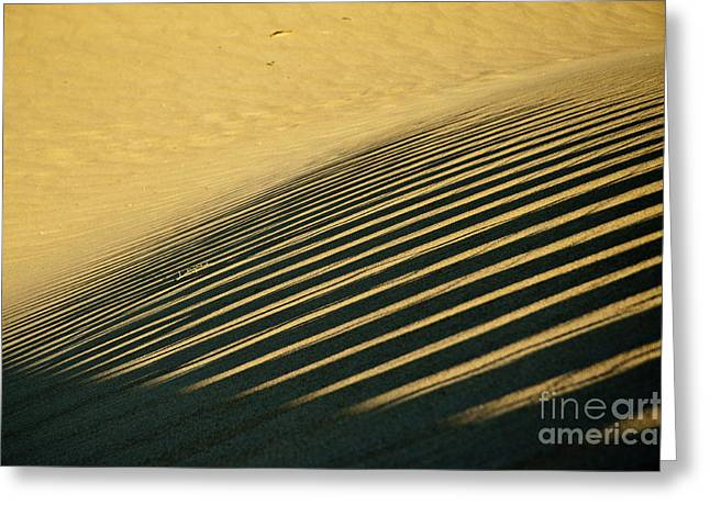 Death Valley 12 Greeting Card