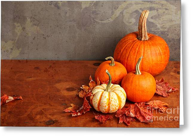 Decorative Fall Pumpkins Greeting Card by Verena Matthew