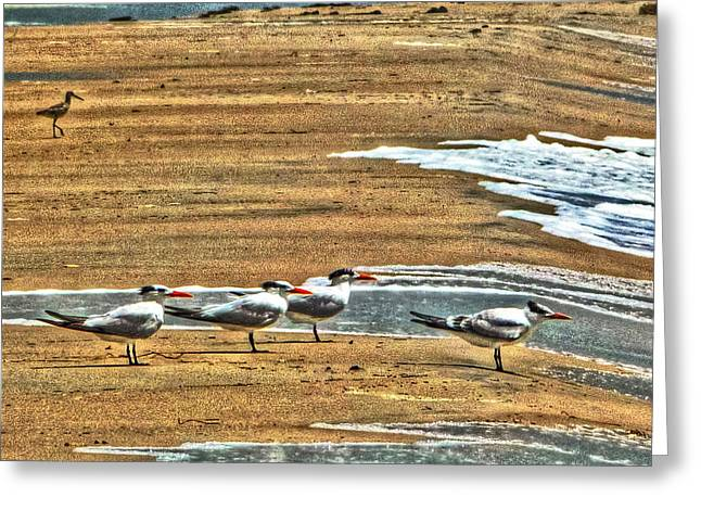 Dee-tern-mined Greeting Card by William Fields